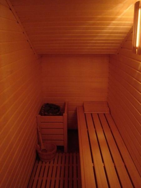 wellness savne suha savna lesena IR finska bio zeliscna remax (7)